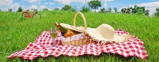 picnic on the bike