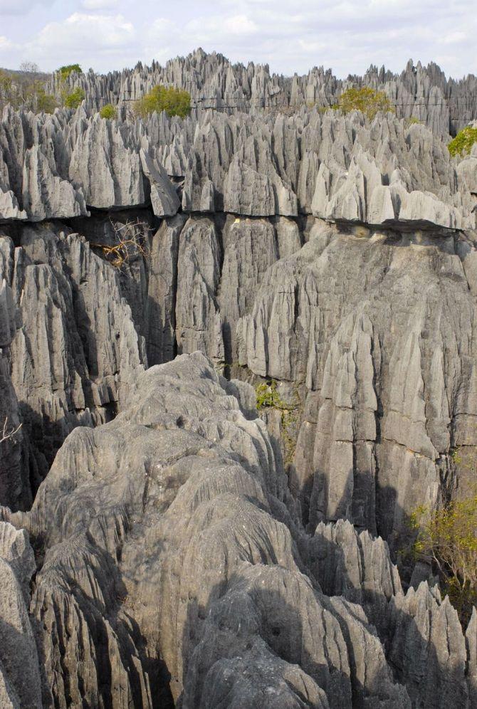 Stone Forest, Madagascar3